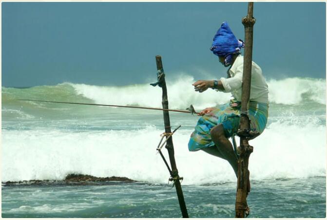 Sri Lanka - Tea, Nature And Culture